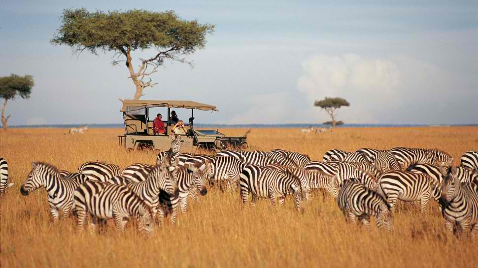 top African Safari Destinations